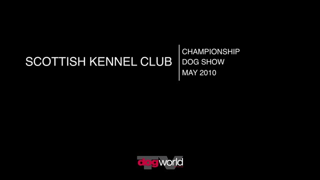 Scottish Kennel Club, May 2010