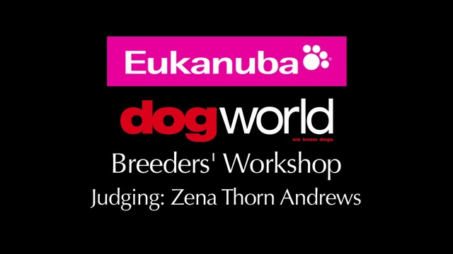 Breeders Workshop - Judging