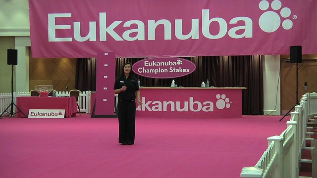Eukanuba Champion Stakes final 2010