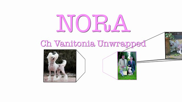 Nora: Unwrapped